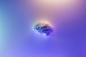 brain stroke robotics